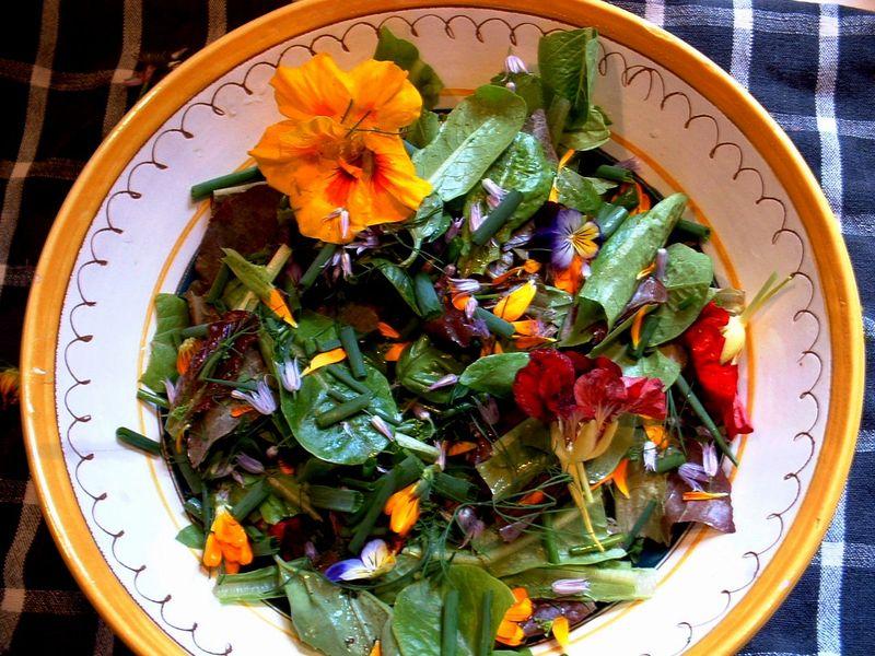 First summer salad