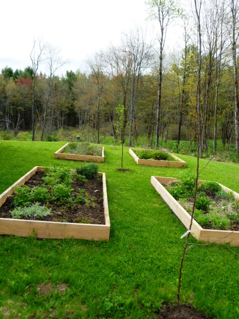 New Herb Beds