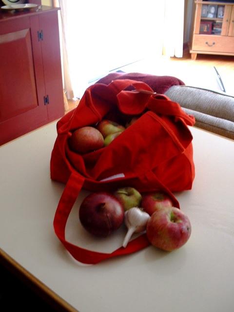 Inside_the_bag